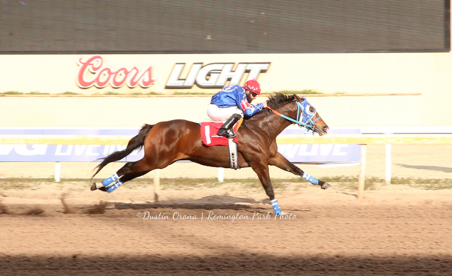 Oklahoma Futurity Fastest Qualifier Seven Tales