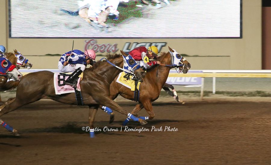 Apollitical Pence winning the 2020 Mighty Deck Stakes at Remington Park