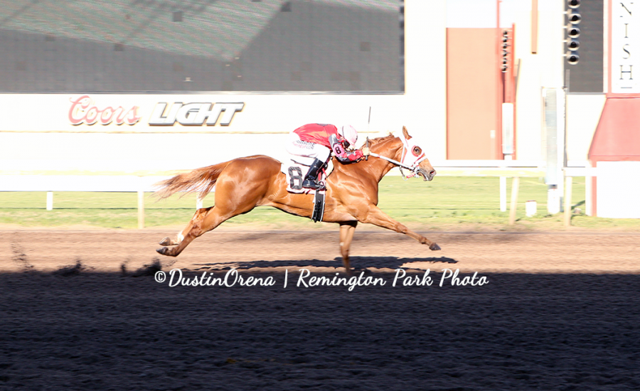 Aint She Tempting Fastest Qualifier Heritage Place Futurity